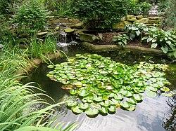 Rodef Shalom Biblical Botanical Garden