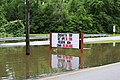 Roman Forest Flooding - 4-18-16 (25910010174).jpg