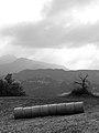 Round Bales - Near Ginepreto, Castelnovo ne' Monti (RE) Italy - July 9, 2011 - panoramio.jpg
