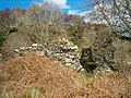 Ruins of St Columba's Chapel - geograph.org.uk - 145560.jpg