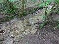 Ruisseau de Loverchy @ Parc du Val Vert @ Seynod (50884055358).jpg