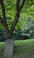 Runsten i Skolparken.jpg