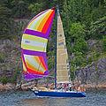 Sailboat 6702.jpg