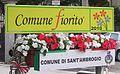 Sant'Ambrogio Comune Fiorito 1º Anno 2010.jpg
