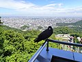 Sapporo ski jump - panoramio.jpg