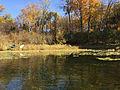 Saunders Lake Mound MN 04.jpg