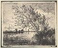 Scent of Alders MET DP822390.jpg