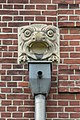 Schule Rhiemsweg (Hamburg-Horn).Wasserspeier.29334.ajb.jpg