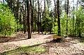 Scoutcentrum Buitenzorg Baarn - panoramio (12).jpg