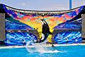 SeaWorld San Diego5.jpg