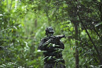 Brazilian Armed Forces - Battle in the jungle.