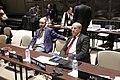 Sesión General de la Unión Interparlamentaria, continuación (8587083720).jpg