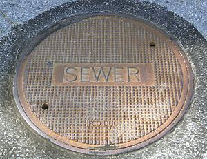 Sanitary sewer - A manhole cover for a sanitary sewer access point.