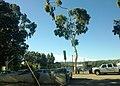 Sherman Oaks, Los Angeles, CA, USA - panoramio (199).jpg