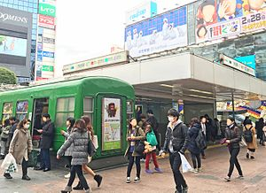 Shibuya Station - The Tokyu and Tokyo Metro Line Entrance in February 2016