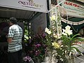 Shop selling from Lalbagh flower show Aug 2013 8755.JPG