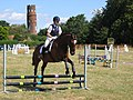 Showjumping at Little Berkhamsted - geograph.org.uk - 743711.jpg