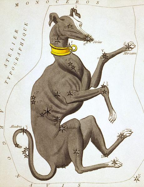 File:Sidney Hall - Urania's Mirror - Canis Major.jpg