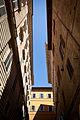Sienna (5595597327).jpg