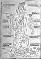 Signs of the Zodiac and male figure. Wellcome L0002317.jpg