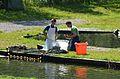 Sirnitz Neualbeck 10 Fischereibetrieb Payr Ernte 16072013 377.jpg
