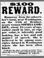 SlaveRewardWashington1858.jpg