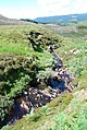 Small waterfall - geograph.org.uk - 495392.jpg