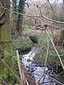Small woodland stream - geograph.org.uk - 121892.jpg