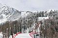 Sochi2014 - panoramio (141).jpg