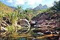 Socotra - panoramio - blackseav (2).jpg