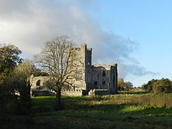 Southern face of Tintern Abbey, Co Wexford.JPG