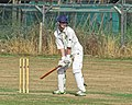 Southwater CC v. Chichester Priory Park CC at Southwater, West Sussex, England 021.jpg