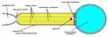 SpaceShipOne schematic.png