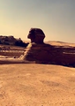 Sphinx side in afternoon.png