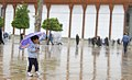 Spring rain in Shah Cheragh, Shiraz - 13 April 2018 05.jpg