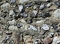 St Peter's Church, Ash Church Road, Ash (May 2014) (Stone and Flint Wall).JPG