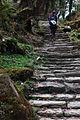 Stairs up to Tarapani (4525916784).jpg