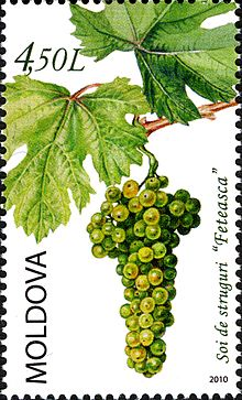 Stamps of Moldova, 2010-33.jpg