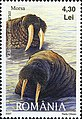Stamps of Romania, 2007-105.jpg