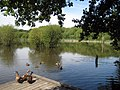 Stanley Marshes lake - geograph.org.uk - 928301.jpg