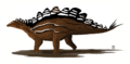 Stegosaurus stenops sophie wiki martyniuk.png