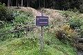 Steinach-Sonnebergerstr.jpg