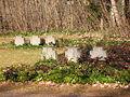 Steinkreuze auf dem Ehrenfriedhof der KZ-Gedenkstätte Flossenbürg.jpg