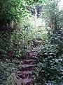 Steps and stile - geograph.org.uk - 191609.jpg
