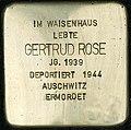 Stolpersteine Köln Sülzgürtel 43 t.jpg