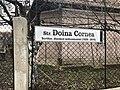 Str Doina Cornea Cluj Napoca.jpg