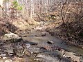 Stream Potts Branch Trail Umstead SP 5543 (3346436105).jpg