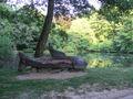 Stupava rybník.jpg