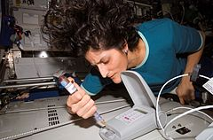 Sunita Williams aboard the International Space Station, working with a biological and chemical substances detector, 2007, public domain