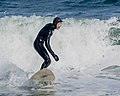 Surfer Dude (16617245534).jpg